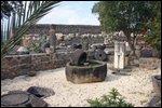 ruins-in-capernaum-x1